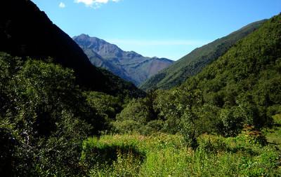 geography_bhutan